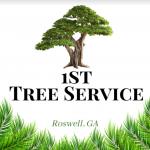 1st Tree Service Roswell GA logo