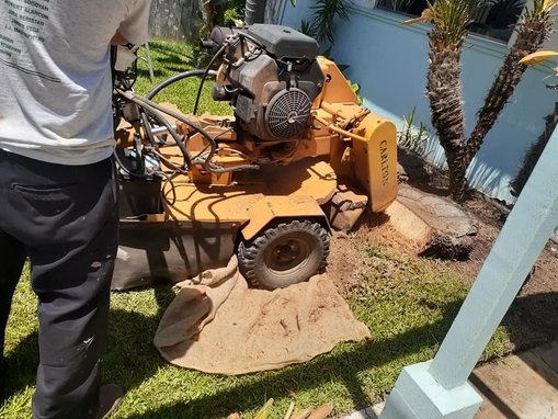 Picture of our stump grinder being used to remove a stump for a customer in Roswell, GA